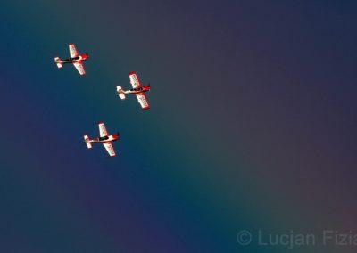Grupa Firebirds