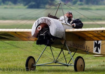 Pterodactyl Flight